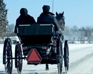 Amish buggy on road in winter